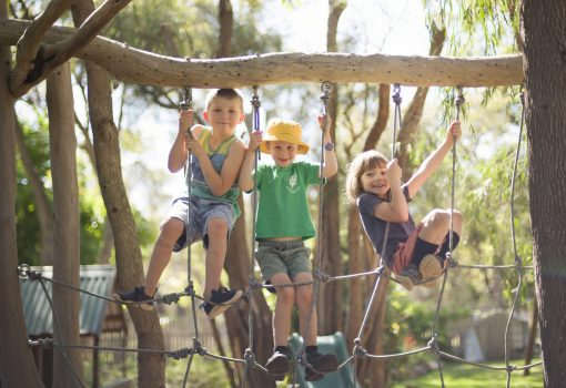Children climbing in ropes